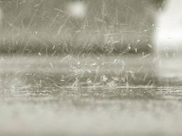 rain showrr